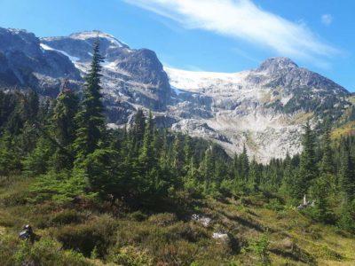 whistler alpine meadows 55k