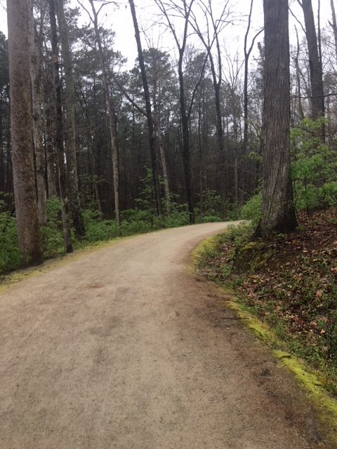 umstead 50 race report