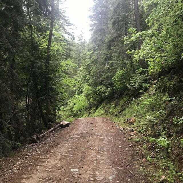 trail rail 50 race report