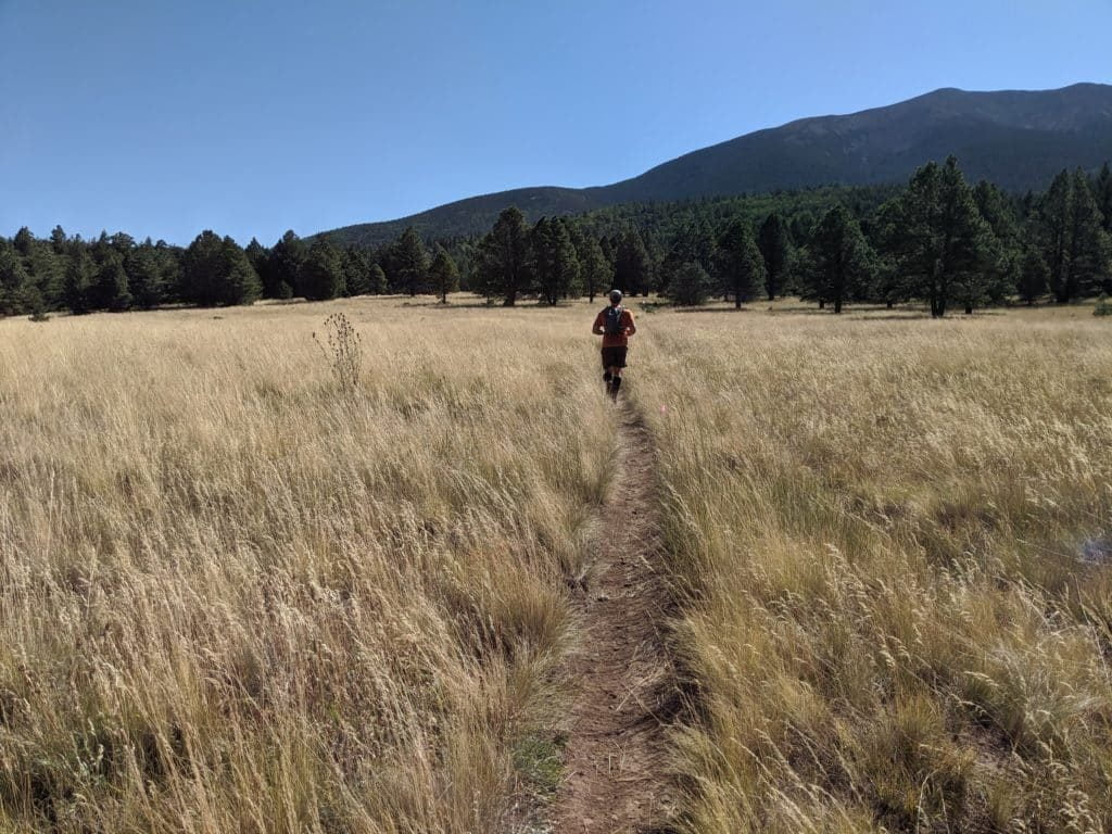 stagecoach 100 mile ultra race report