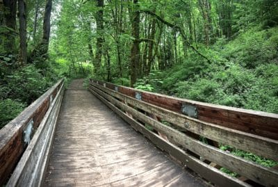 coal creek bridge seattle